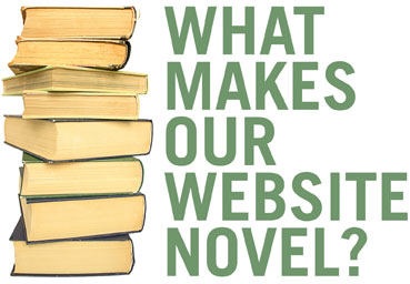 Website novel